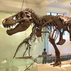 Photo taken at David H. Koch Dinosaur Wing by Rod B. on 10/21/2012