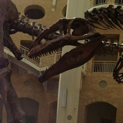 Photo taken at Fernbank Museum of Natural History by Travis H. on 4/25/2013