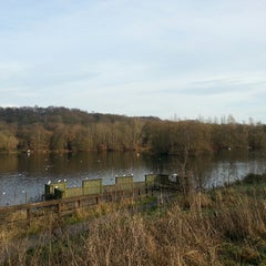 Photo taken at Clifton Country Park by Matt H. on 12/31/2014