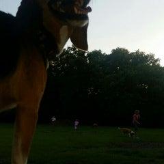 Photo taken at Al Lopez Dog Park by Danielle G. on 6/9/2015