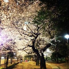 Photo taken at 哲学堂公園 by k2low on 4/6/2012