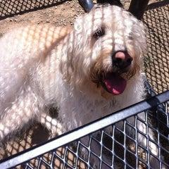 Photo taken at Foothills Community Dog Park by Julie B. on 7/28/2012