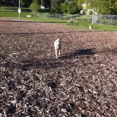 Photo taken at Bassett Creek Dog Park by Israel N. on 5/10/2012