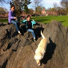 Photo taken at Buchanan Park by Mark K. on 4/5/2012