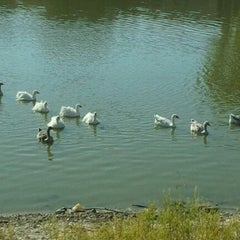 Photo taken at The Pond by Lisa H. on 9/9/2011