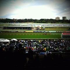 Photo taken at Royal Randwick Racecourse by Paul H. on 10/1/2011