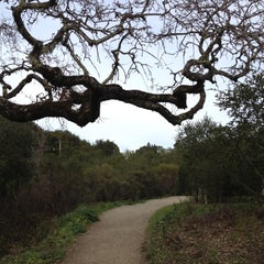 Photo taken at Windy Hill Open Space Preserve by Napa Valley Bitters C. on 2/26/2012