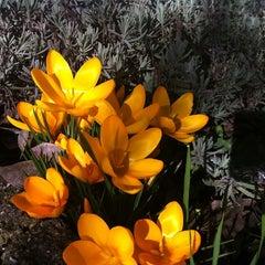 Photo taken at Arundel by Damian J. on 2/16/2011