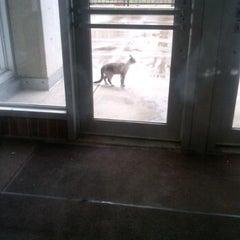 Photo taken at Karrmann Library at UW-Platteville by Veronica B. on 11/14/2011