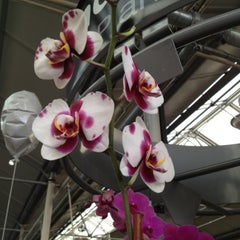 Photo taken at The Home Depot by Sheryl C. on 2/2/2012