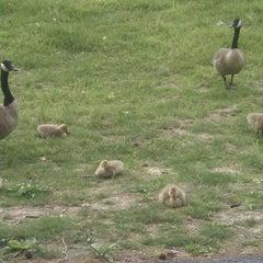 Photo taken at Washington Lake Park by Julia H. on 5/12/2011