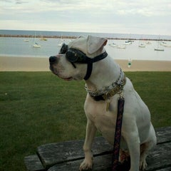 Photo taken at South Shore Park by Cindy S. on 9/23/2011