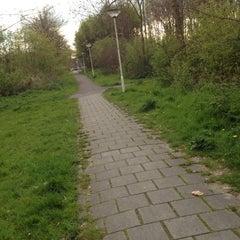 Photo taken at Seghwaertse Hout by Alwin S. on 4/21/2012