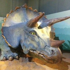 Photo taken at Museo Civico di Storia Naturale by Luca R. on 1/27/2012