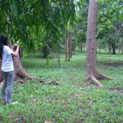 Photo taken at Hutan Kota Malabar by Ellen D. on 12/17/2011