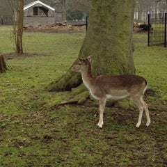 Photo taken at Kinderboerderij De Houthoeve by Annemarie K. on 3/4/2012