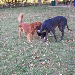 Photo taken at Howard Dog Park by Denise M. on 10/8/2011