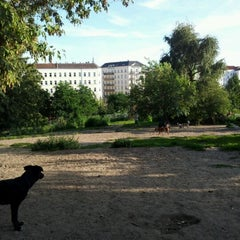 Photo taken at Hundeauslauf Mauerpark by Erik E. on 8/20/2011