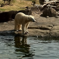 Photo taken at Columbus Zoo & Aquarium by Kyle S. on 3/20/2011