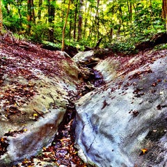 Photo taken at Wissahickon Valley Park by Nick F. on 9/12/2012