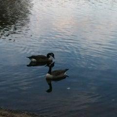 Photo taken at Burke Lake by Adwoa U. on 10/23/2011