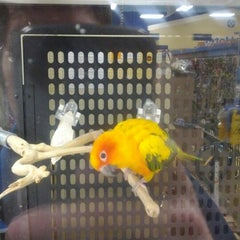 Photo taken at PetSmart by Andrew G. on 1/27/2012