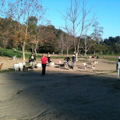 Photo taken at Laurel Canyon Dog Park by Ayden L. on 11/25/2011
