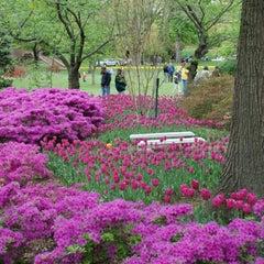 Photo taken at Sherwood Gardens by Steven M. on 9/2/2012