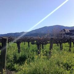 Photo taken at Del Dotto Vineyards by Tomoyuki N. on 3/4/2012