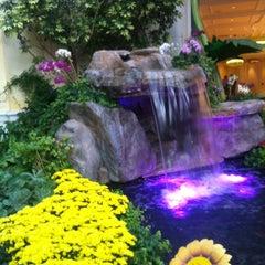 Photo taken at Bellagio Conservatory & Botanical Gardens by Len P. on 8/27/2012
