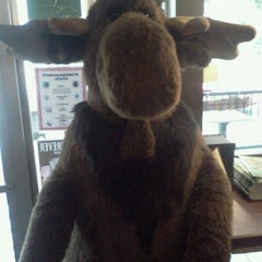 Photo taken at Blue Moose Coffee House by Victória G. on 3/31/2012