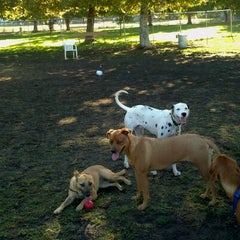 Photo taken at Sepulveda Basin Off-Leash Dog Park by Chris R. on 10/12/2011