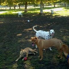 Photo taken at Sepulveda Basin Off-Leash Dog Park by Chris R. on 10/12/2011