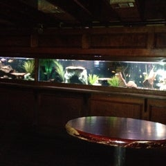 Photo taken at The Aquarium on 6th by Clyde C. on 3/14/2012