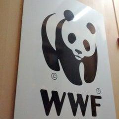 Photo taken at Всемирный фонд природы (WWF) by Evgeniy K. on 1/31/2012