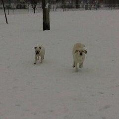 Photo taken at Bassett Creek Dog Park by R M. on 2/25/2011
