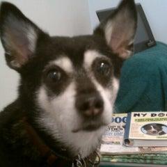 Photo taken at Oak Creek Veterinary Hospital by Greg S. on 7/14/2012