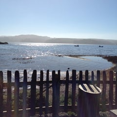 Photo taken at Hog Island Oyster Farm by Michelle on 2/25/2012