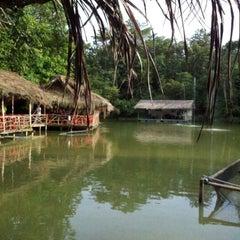 Photo taken at Veg Fish Farm Thai Restaurant (菜园酒家) by Shirley T. on 7/23/2012
