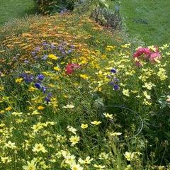 Photo taken at Matthaei Botanical Gardens by Debbie D. on 9/25/2011