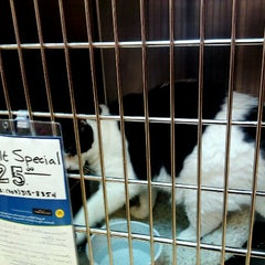 Photo taken at PetSmart by Eric T. on 11/4/2011