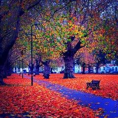 Photo taken at London Fields by Hugo on 11/9/2011