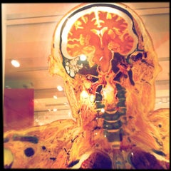 Photo taken at Wellcome Collection by Ally M. on 8/23/2012