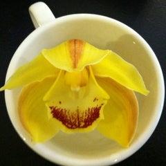 Photo taken at Great Bear Coffee by Joelle D. on 3/21/2012