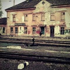 Photo taken at Rákosrendező vasútállomás by Szita V. on 4/16/2012