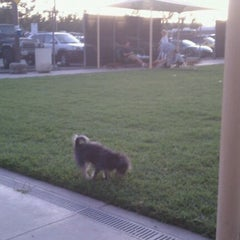 Photo taken at Central Bark by Tim L. on 8/23/2011