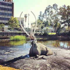 Photo taken at La Brea Tar Pits by Tim G. on 5/28/2012