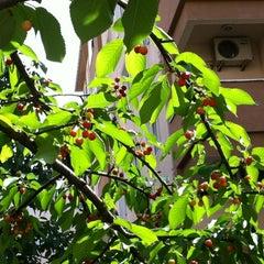 Photo taken at Cihadiye Caddesi by Deniz B. on 5/20/2012