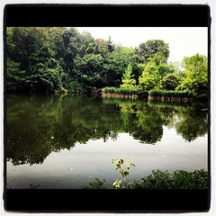 Photo taken at Central Park Duck Pond by Mehtap Y. on 8/8/2012