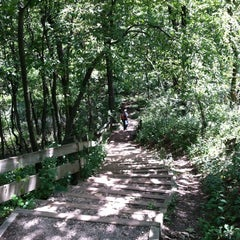 Photo taken at Lapham Peak Unit, Kettle Moraine State Forest by JoAnn H. on 8/18/2012